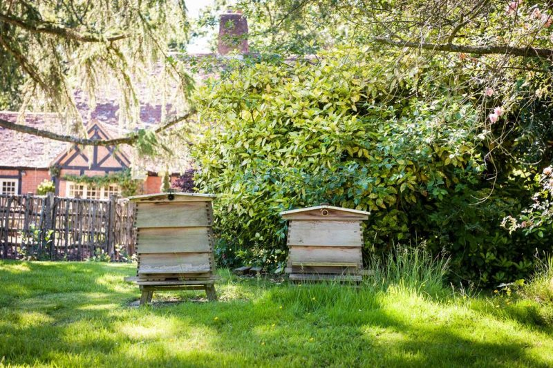 Bee Hive Country Estate Agency